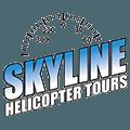 Skyline Logo Retina